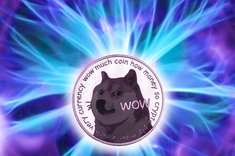 Dogecoin, kryptowaluta, które powstała kilka lat temu jako żart, jest teraz traktowana ze śmiertelną powagą i rozpala namiętności inwestorów /123RF/PICSEL