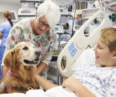 Dogoterapia: Najlepszy lek dla ciężko chorych osób