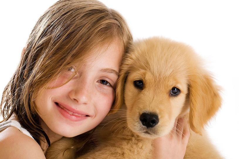 Dokonując wyboru psa terapeuty, zwróć uwagę na to, by miał on łagodny charakter! /123RF/PICSEL
