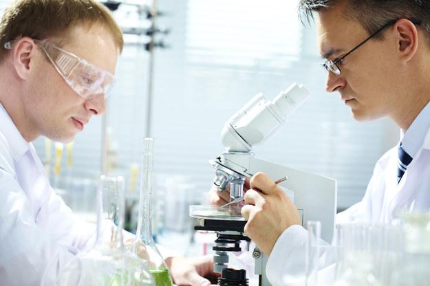 Doktoraty wdrożeniowe krokiem w stronę innowacji? /© Glowimages
