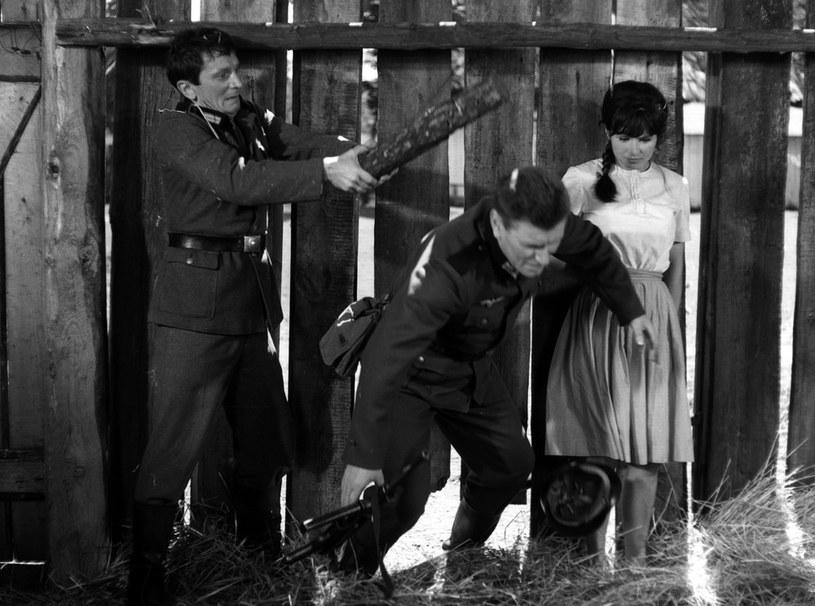 Dolas nie potrafił oprzeć się urodzie Teresy (Joanna Jędryka). Nie była to jedyna kobieta, dla której dzielny żołnierz stracił głowę. /East News/POLFILM