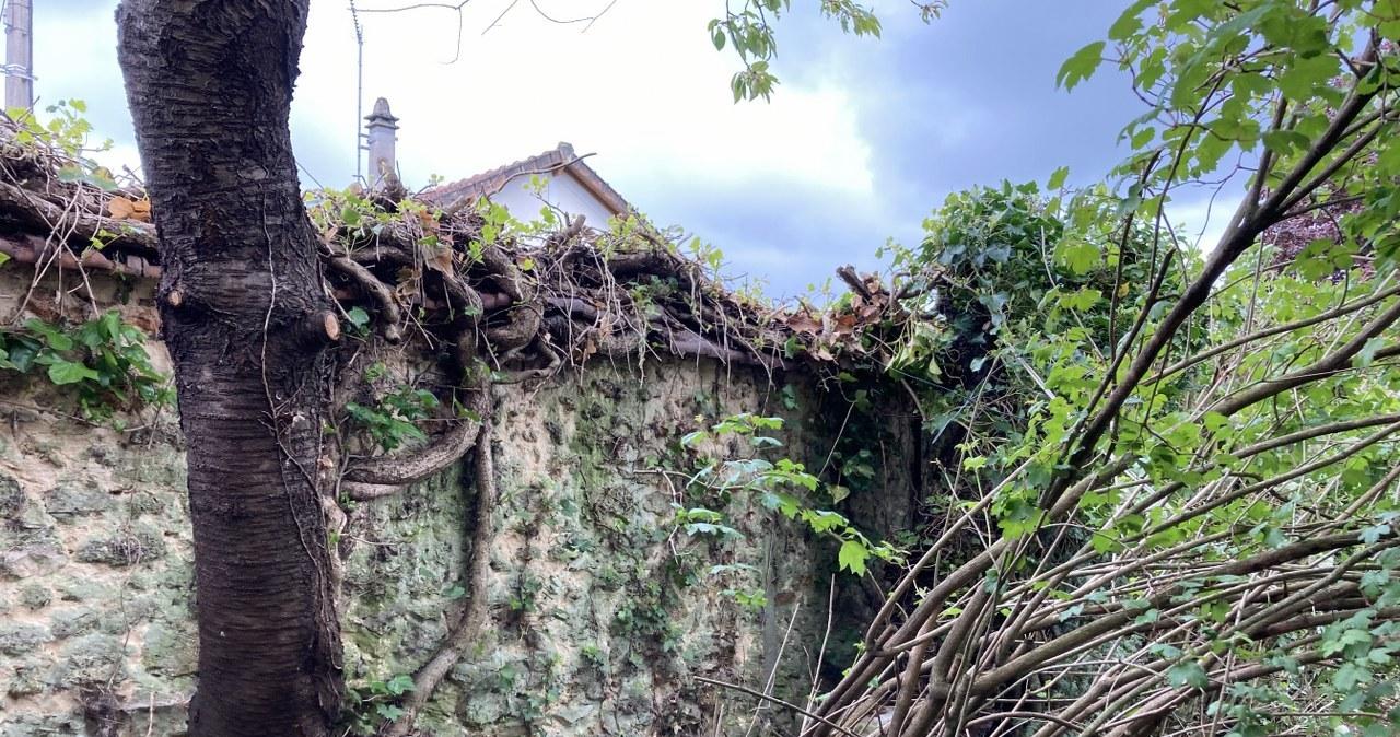 Dom Marii Curie-Skłodowskiej z zewnątrz