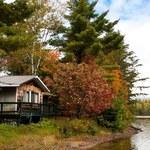 Dom na działce leśnej - jak go sprzedać?