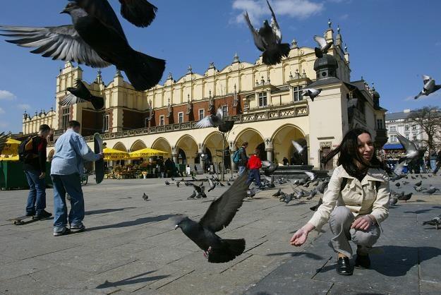 Dom pod Krakowem w cenie mieszkania? Fot. Sean Gallup /Getty Images/Flash Press Media