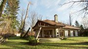 Dom z drzewem w salonie i kuchnia w stylu rustykalnym