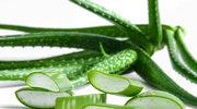 Domowe kosmetyki z liści aloesu