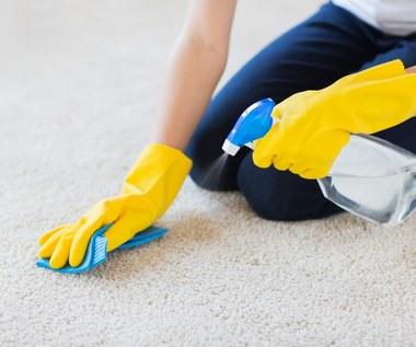 Domowe środki do czyszczenia dywanów