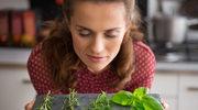 Domowy zielnik: Sposób na świeże i aromatyczne przyprawy poza sezonem