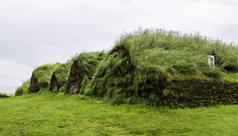 Domy torfowe to relikt przeszłości, choć niektórzy Islandczycy zamieszkiwali je jeszcze na początku XX wieku /123RF/PICSEL