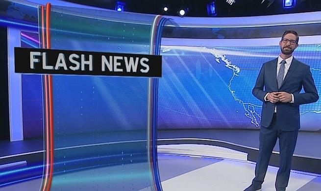 Donald Arleth na antenie TVP Info /TVP