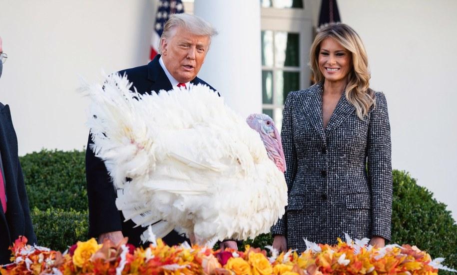 Donald i Melania Trump w towarzystwie indyka Corna /KEVIN DIETSCH / POOL /PAP/EPA
