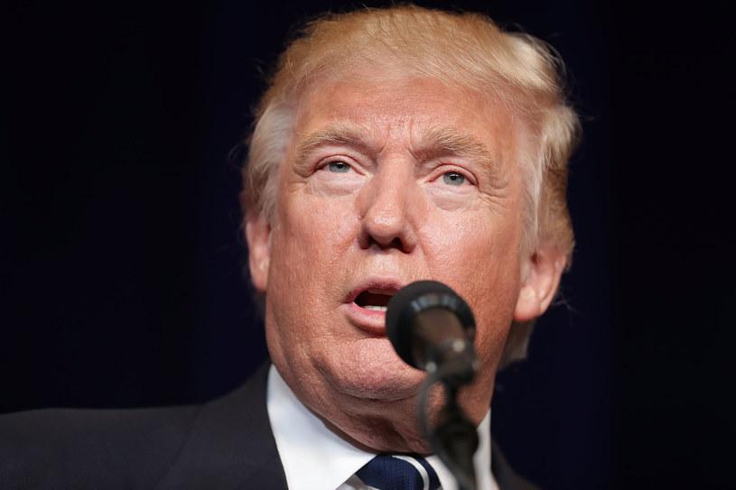 Donald Trump apeluje do wyborców Hillary Clinton /AFP