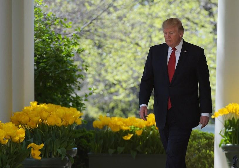 Donald Trump / MANDEL NGAN/ /AFP