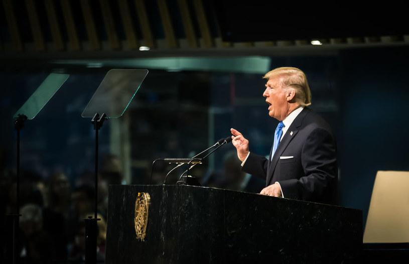 Donald Trump /123RF/PICSEL