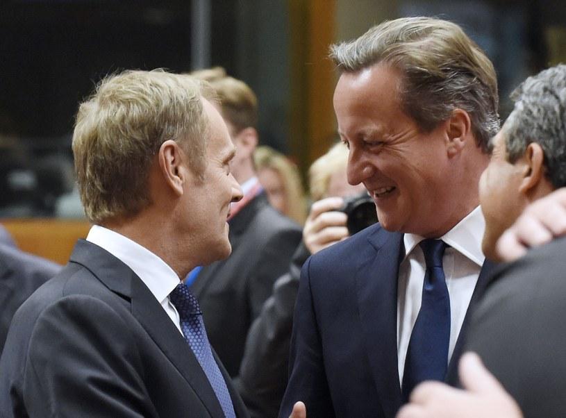 Donald Tusk i David Cameron na szczycie UE /AFP