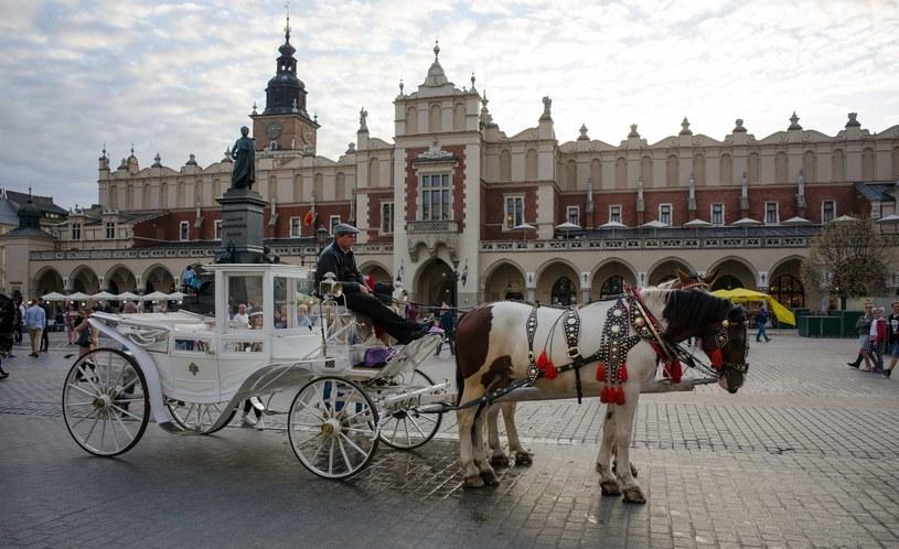 Dorożka na Rynku Głównym w Krakowie /ANDRZEJ ZBRANIECKI /East News