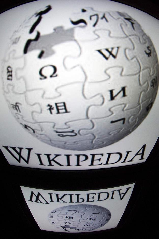 Doskonały rok dla Wikipedii /AFP