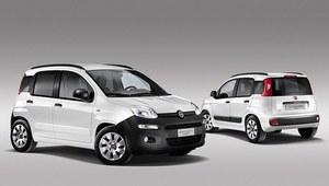 Dostawczy Fiat Panda