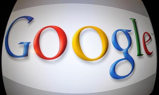 Dotychczas Google zeskanował 15 mln książek /AFP