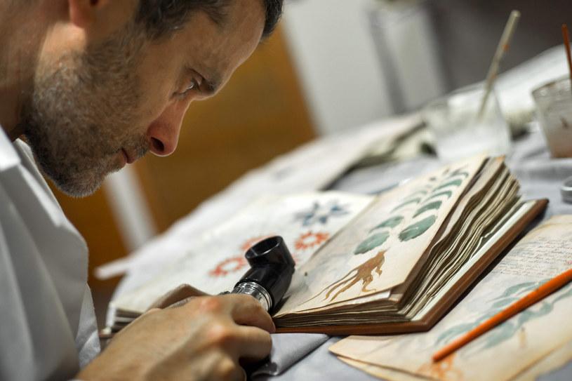 Dotychczas twierdzono, iż manuskrypt Wojnicza został stworzony m.in. po chińsku, mandżursku czy wjęzyku Azteków, a nawet że treść księgi jest zapisem mowy anielskiej / CESAR MANSO /East News