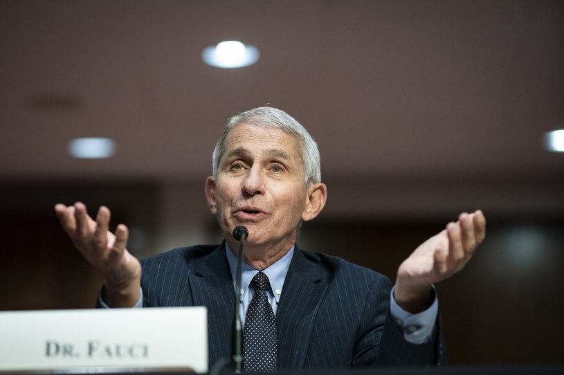 Dr Anthony Fauci /Al Drago - Pool /Getty Images