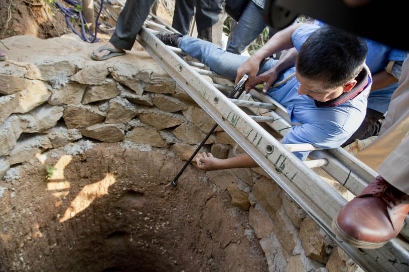 Dr Bijoy Gogoi celuje środkiem uspokajającym w stronę lamparta /Associated Press /East News