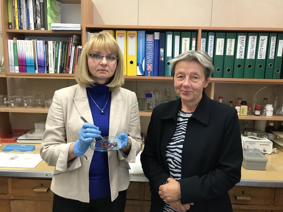Dr hab. Marta Fiołka i prof. Jolanta Rzymowska /Krzysztof Kot /RMF FM
