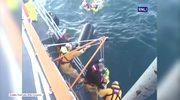 Dramatyczna akcja ratunkowa u wybrzeża Szetlandów. Zatonął rybacki kuter, ocalono pięciu rybaków