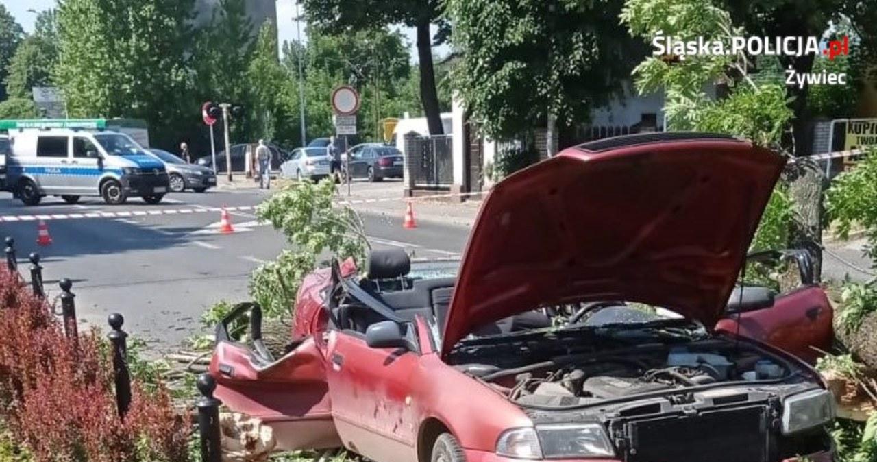 Dramatyczne nagranie. Drzewo przygniata auto, w którym była matka z córką