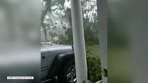 Dramatyczne nagranie z Wysp Dziewiczych. Uginające się drzewa i zniszczone domy