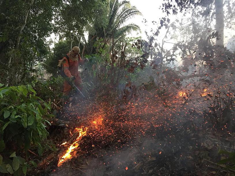 Dramatyczne skutki żywiołu /Porto Velho Firefighters HANDOUT  /PAP/EPA