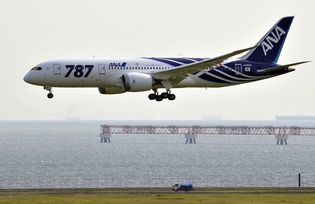 Dreamlinery mogą znowu latać w barwach japońskich linii ANA /AFP