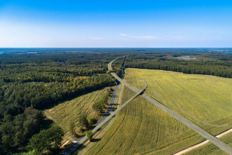 Droga pobiegnie przez tereny cenne przyrodniczo /GDDKiA