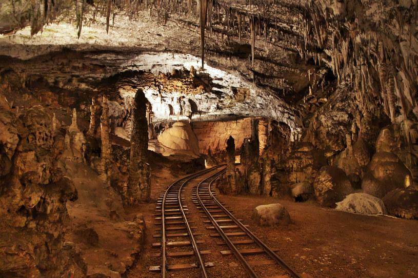 Drogę w Jaskini Postojnej w większości pokonuje się kolejką, co jest sporym ułatwieniem dla turystów