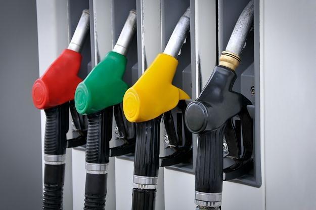 Drogie paliwo na stacjach benzynowych napędza szarą strefę /©123RF/PICSEL