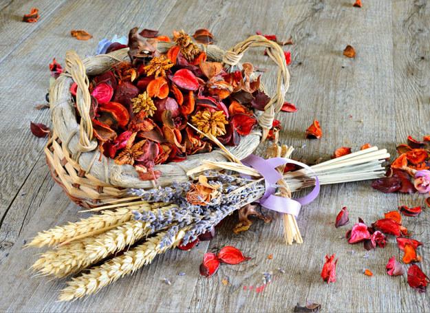 Druga połowa lata to idealna pora, by zrywać lub ścinać trawy, zioła i kwiaty przeznaczone do suszenia /123RF/PICSEL
