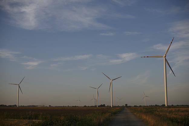 Drugi park wiatrowy RWE w Nowym Stawie /Informacja prasowa