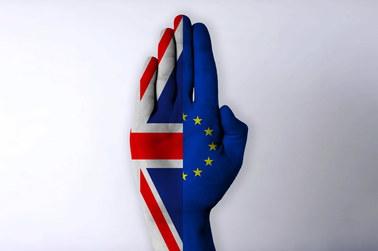 Drugie referendum. Znikający punkt czy nadzieja na horyzoncie?