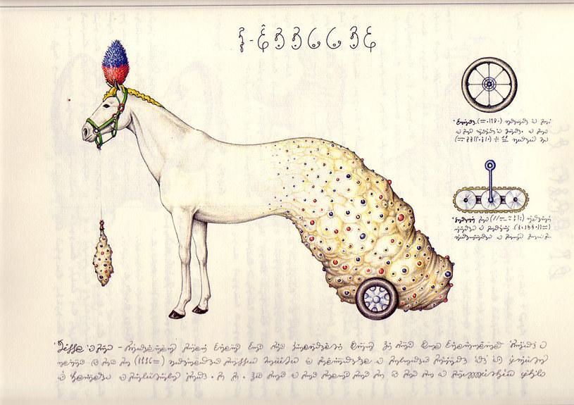Drugiej książki takiej jak Codex Seraphinianus po prostu nie ma /materiały prasowe