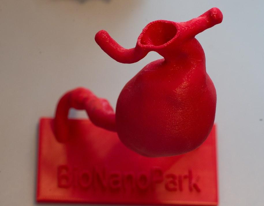 Druk 3D może być przyszłością medycyny /Grzegorz Michałowski /PAP