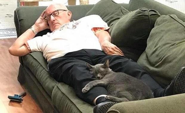 """Drzemka """"kociego dziadka"""". To zdjęcie jest hitem internetu"""