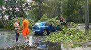 Drzewa spadły na jadące samochody. Załamanie pogody w Białej Podlaskiej