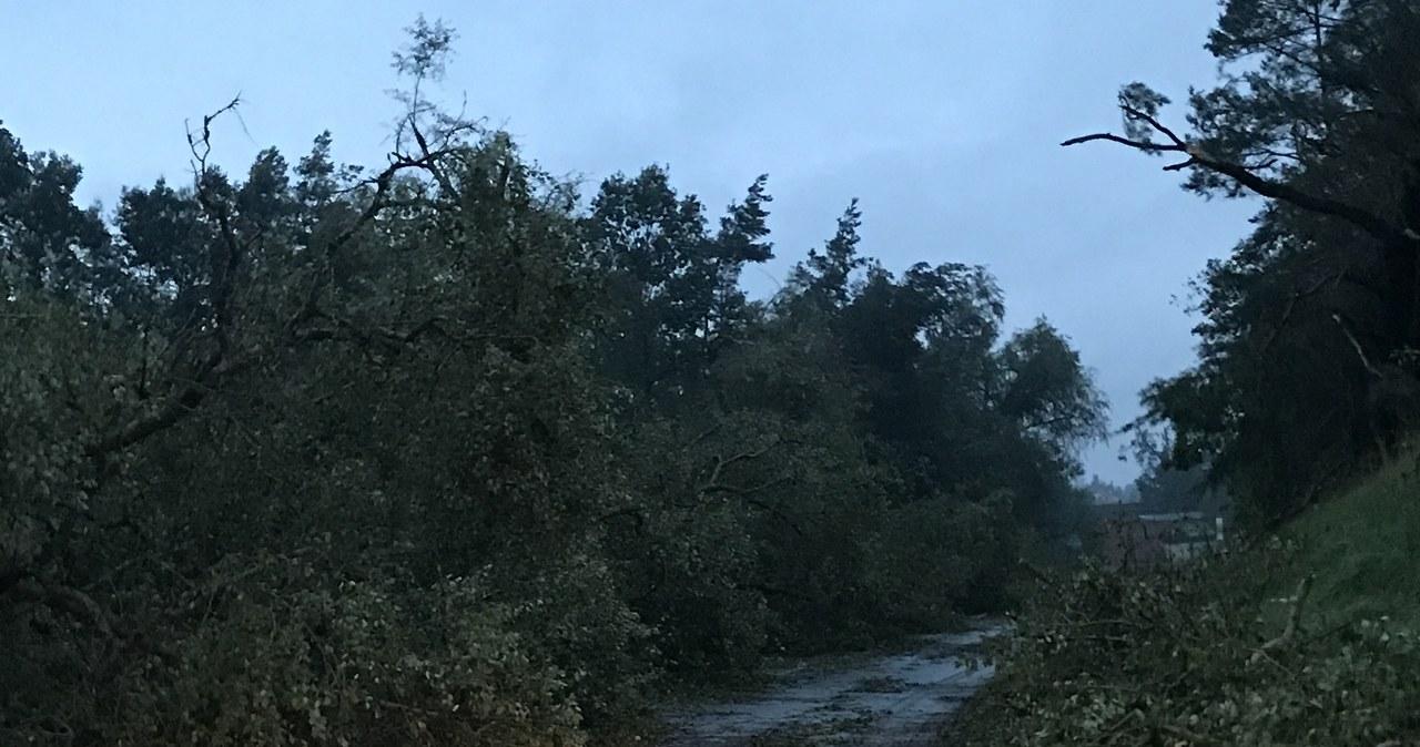 Drzewa wyrwane z korzeniami, zniszczone dachy. Burzowy front nad Polską [WASZE ZDJĘCIA]