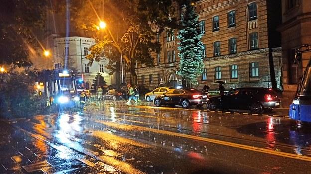 Drzewo, które spadło na tramwaj linii nr 24  przy ul. Westerplatte w Krakowie /Rafał Olszewski /Gorąca Linia RMF FM