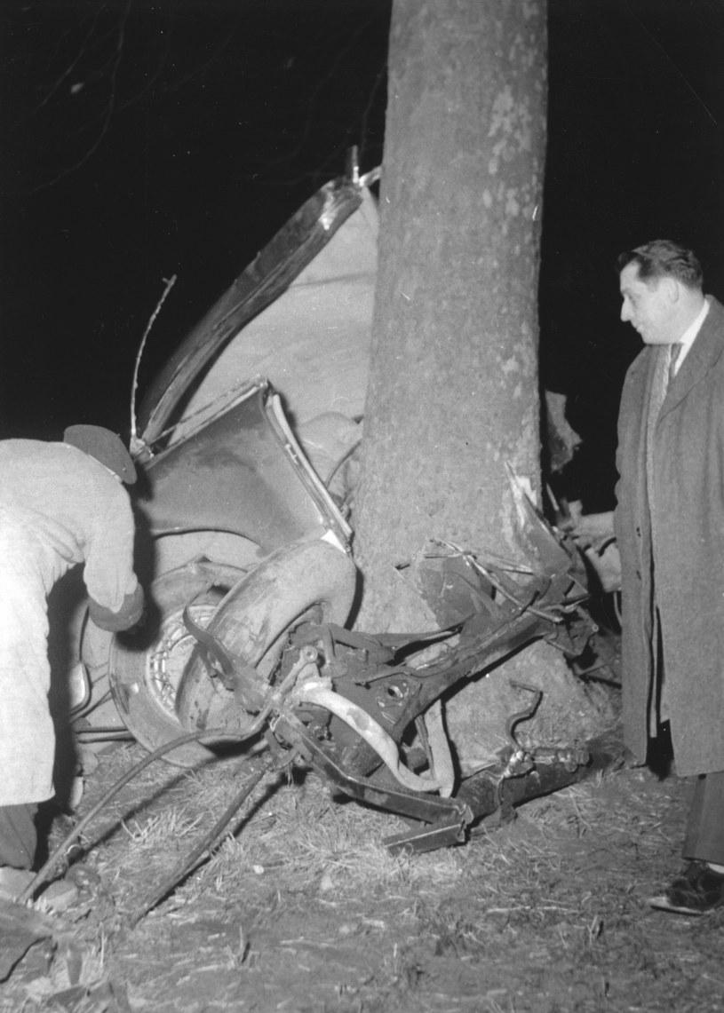Drzewo, na którym rozbił się samochód, którym jechał Albert Camus /AGIP /Agencja FORUM
