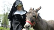 Duchowość benedyktyńska. Jak żyją mniszki w klasztorze klauzurowym?