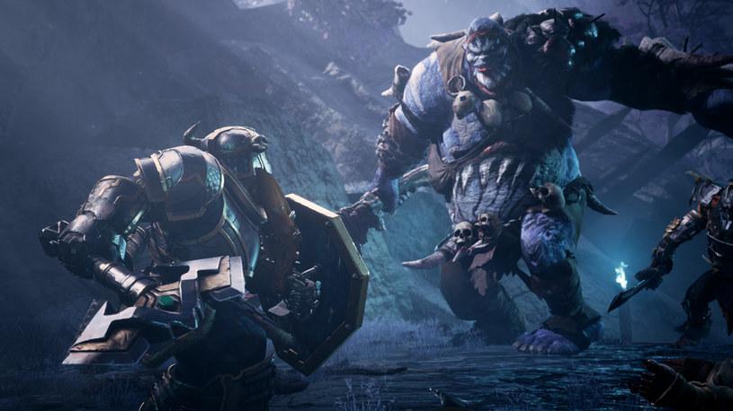 Dungeons & Dragons: Dark Alliance /materiały prasowe