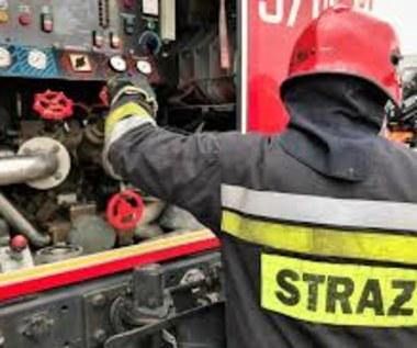 Duży pożar w Czechach, tuż przy polskiej granicy. Z ogniem walczą strażacy z obu krajów