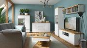 Duży salon – w jakim stylu go urządzić?