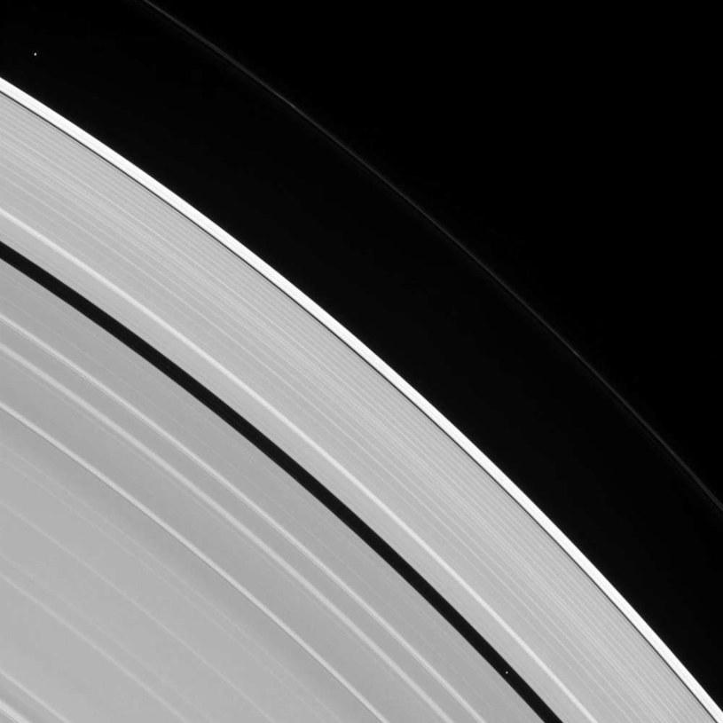 Dwa księżyce Saturna ukryte w jego pierścieniach /NASA
